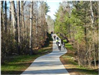 Cyclists on trail through woods